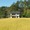 《八ヶ岳》 家づくり教室 ~体験してわかる自然素材の家~