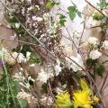 《群馬》自然に寄り添うくらしと花〜季節を愉しむ一輪からの花あしらい〜【予約制】