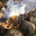 ≪八ヶ岳≫ 森で遊ぼう~落ち葉で焼き芋~